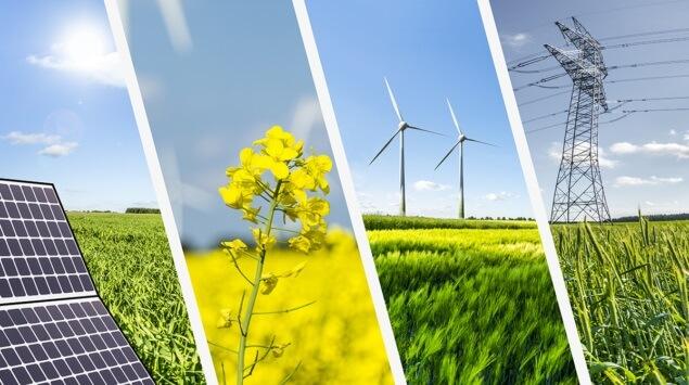 Renewable energy là gì