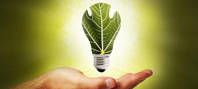 Biomass là gì? Các nguồn Biomass phổ biến