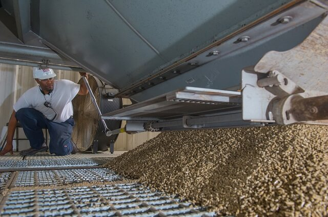 Chọn công ty sản xuất viên nén gỗ chất lượng