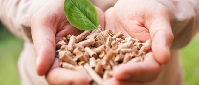 Viên nén gỗ nhiên liệu sinh khối
