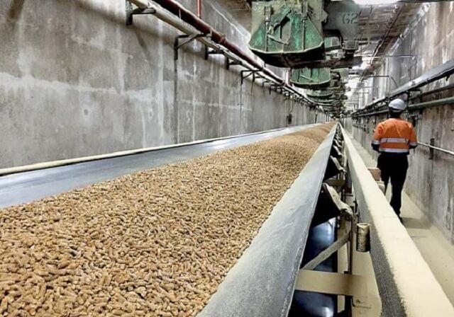 Làm thế nào để chọn nhà sản xuất viên nén gỗ uy tín?
