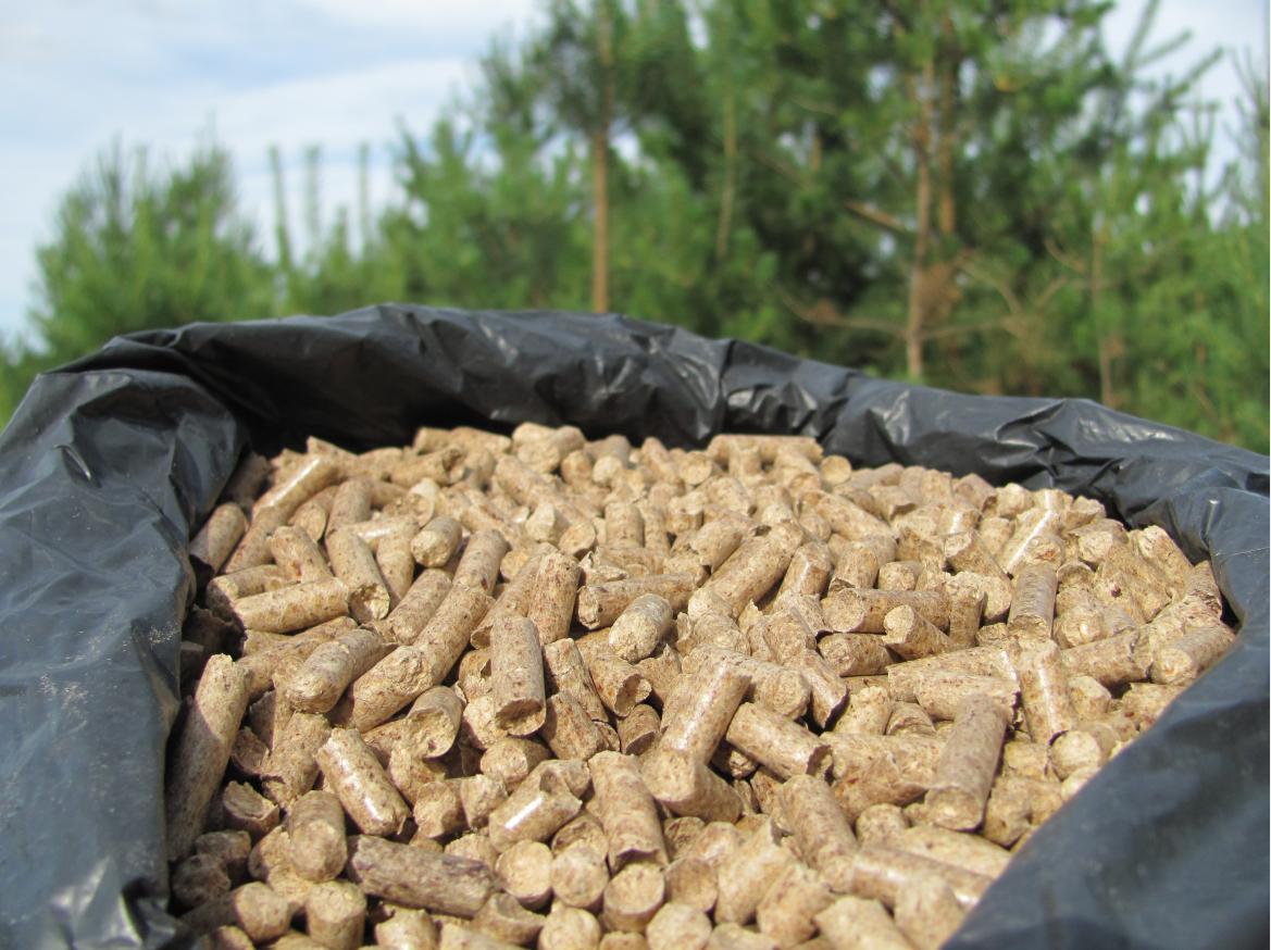 Quy trình sản xuất viên nén gỗ chuẩn