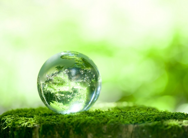 Hiện trạng và sự phát triển trong sử dụng năng lượng sinh khối