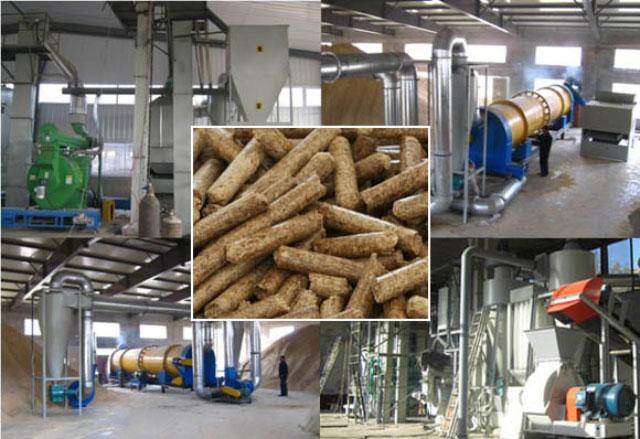 Thái Lan bắt đầu xuất khẩu viên nén gỗ sang Nhật năm 2020