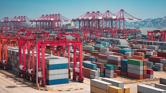 Xuất khẩu viên nén gỗ: Thuế & Thủ tục xuất khẩu