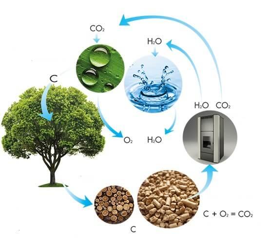 Viên nén gỗ loại bỏ hoàn toàn khí thải cacbon?