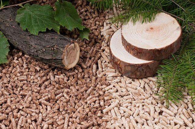 So sánh viên nén gỗ cứng & viên nén gỗ mềm