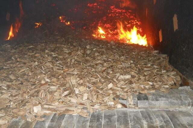 Wood chip là gì? Ứng dụng của Wood chip