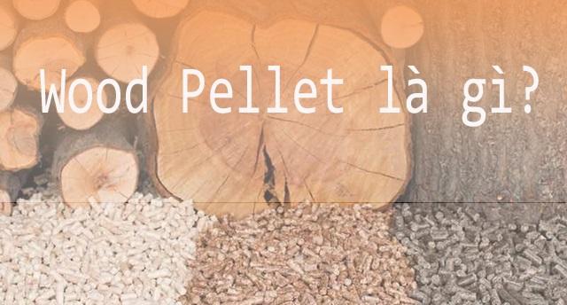 Wood pellet là gì? Lợi ích của wood pellets