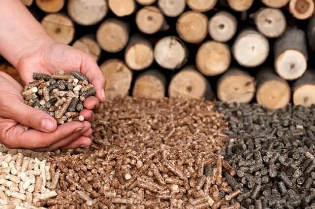 Xuất khẩu viên nén gỗ ở Việt Nam: Tăng trưởng nhanh và giá thấp